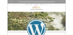 website_preview_wordpress